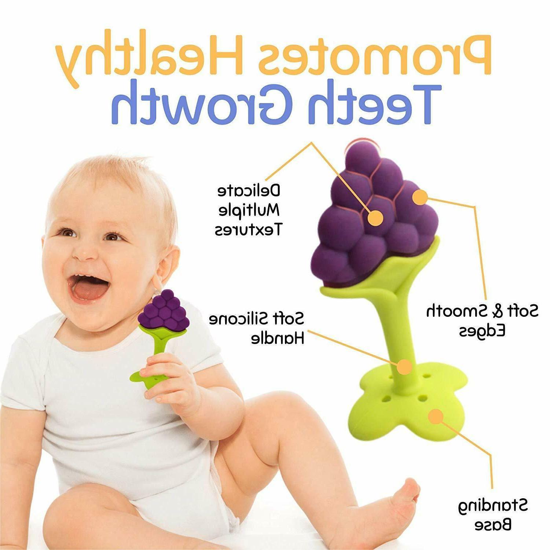 5 Fruit Teething Infants