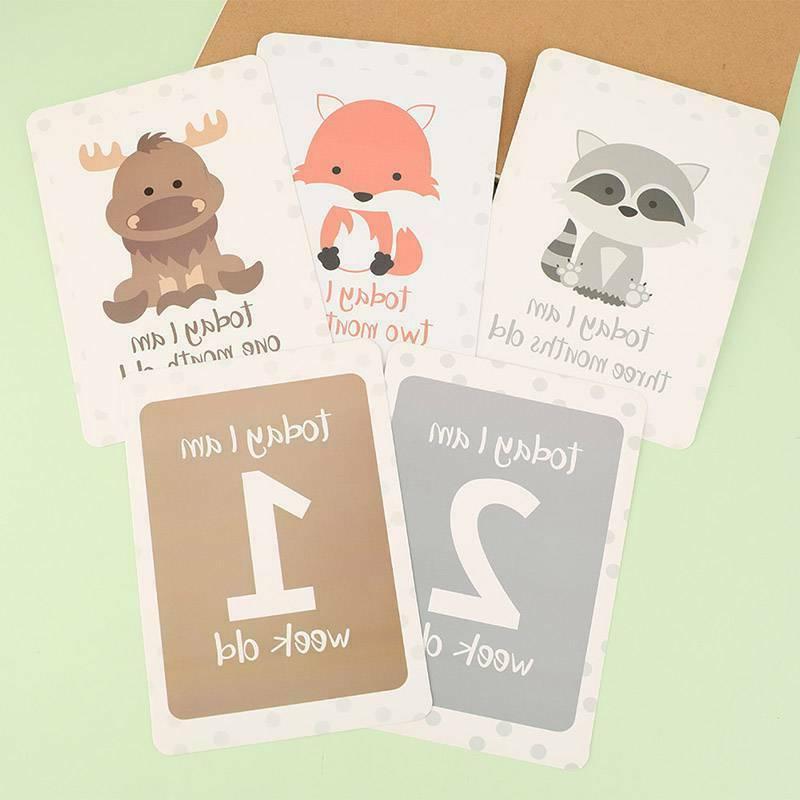 Baby Milestone Animals 24 Shower Gift New US